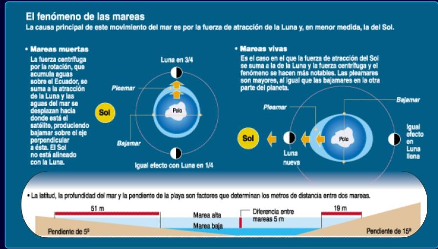 las-mareas-el-surf-9