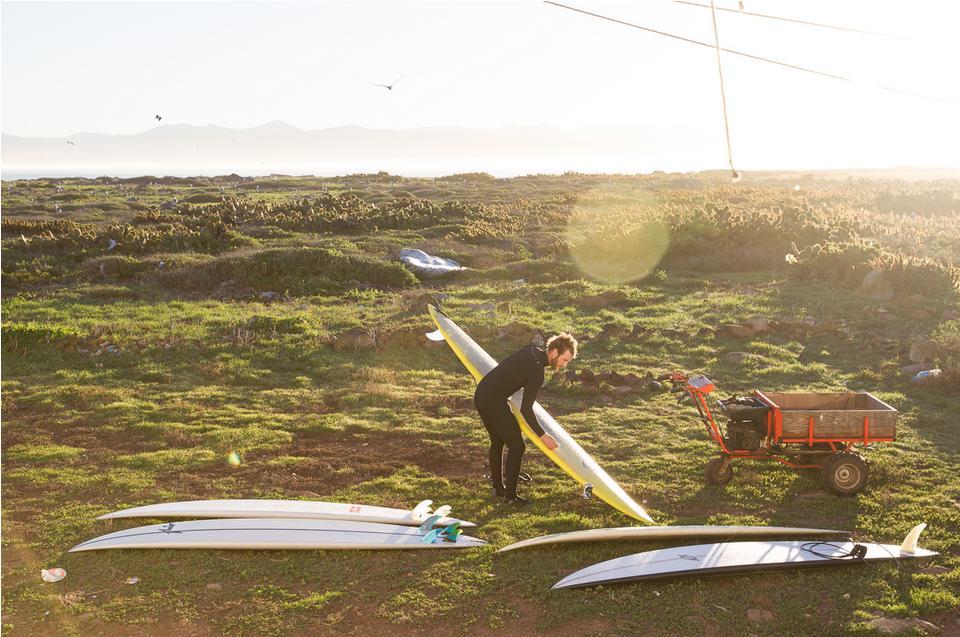 HippTree-John Barton-Surf-Colaboracion